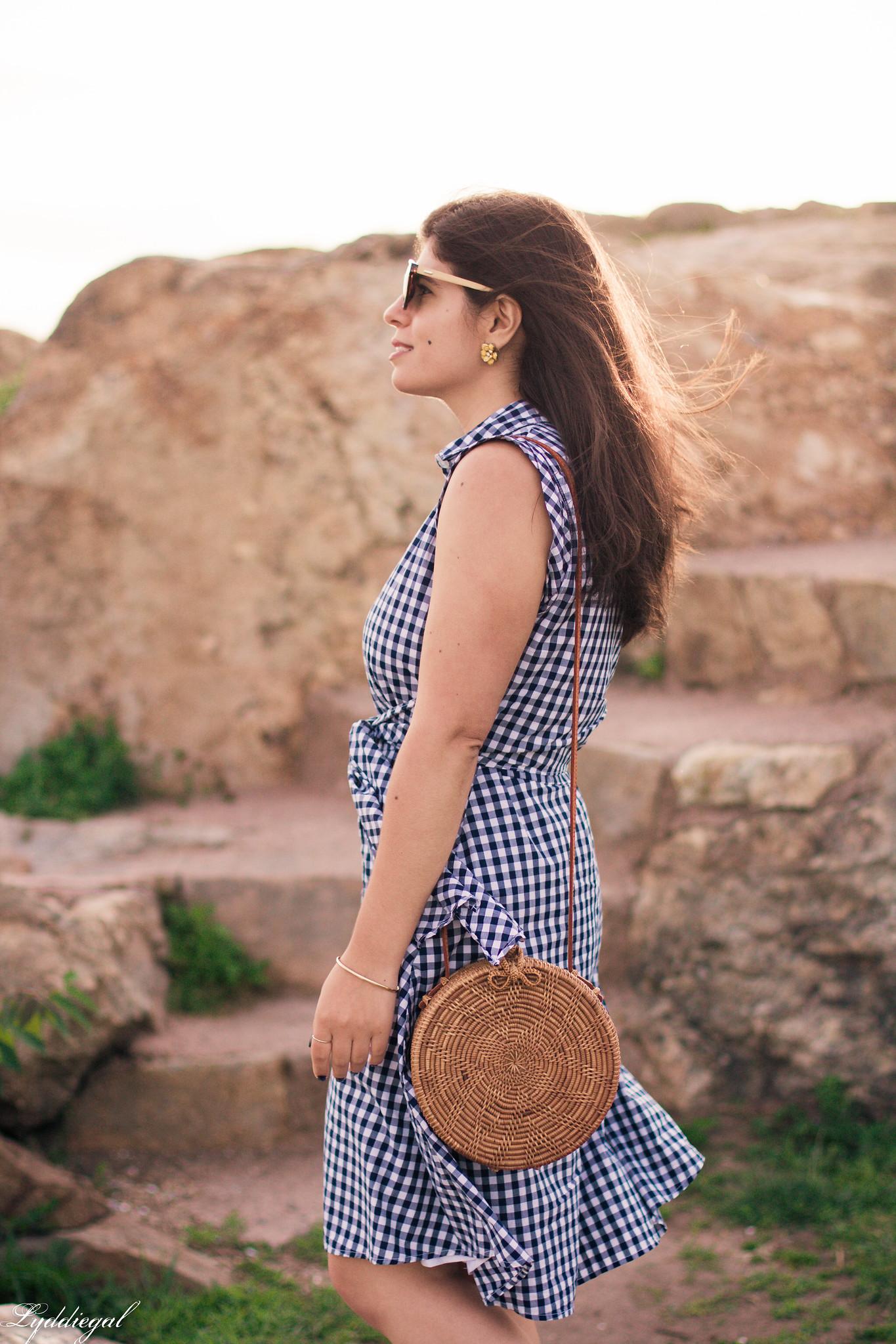 Gingham Dress, Round Straw Bag, Jeweled Sandals-1.jpg