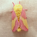 Rosy Maple Moth by magarell