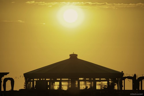 oasis delawareseashorestatepark delaware de sun sunlight sunrise watchingthesunrise silhouette silhouettes sussexcounty bigchillbeachclub statepark park beachclub seashore shore