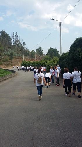 Caminhada em São Pedro da Cova