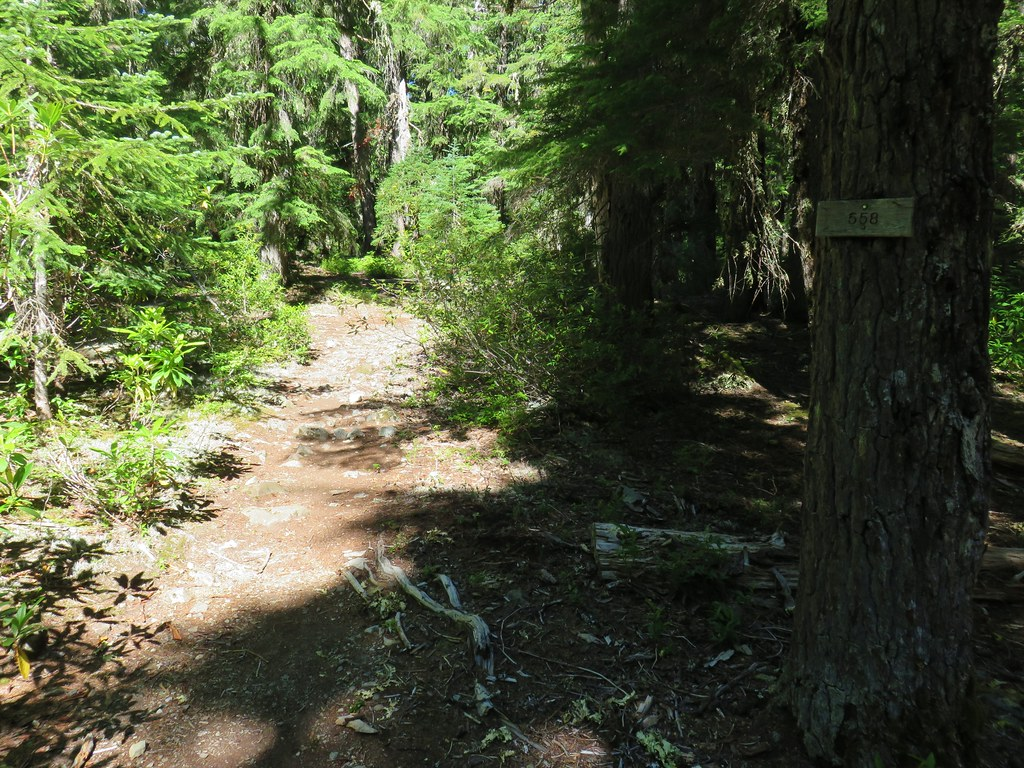 Mother Lode Trail