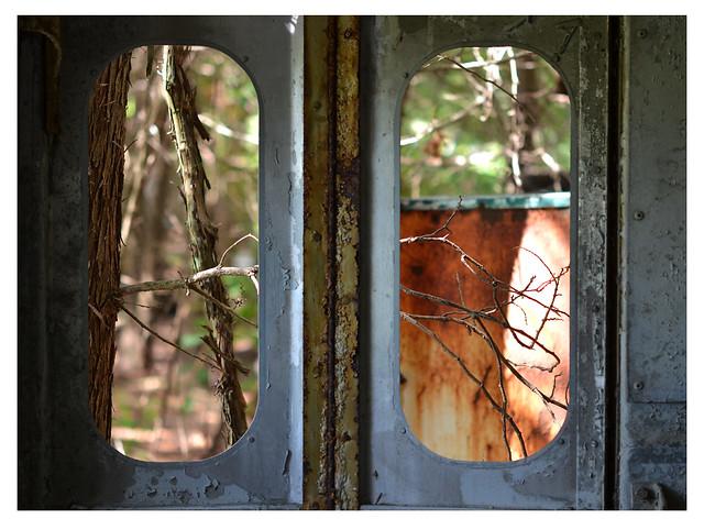 through the double windows
