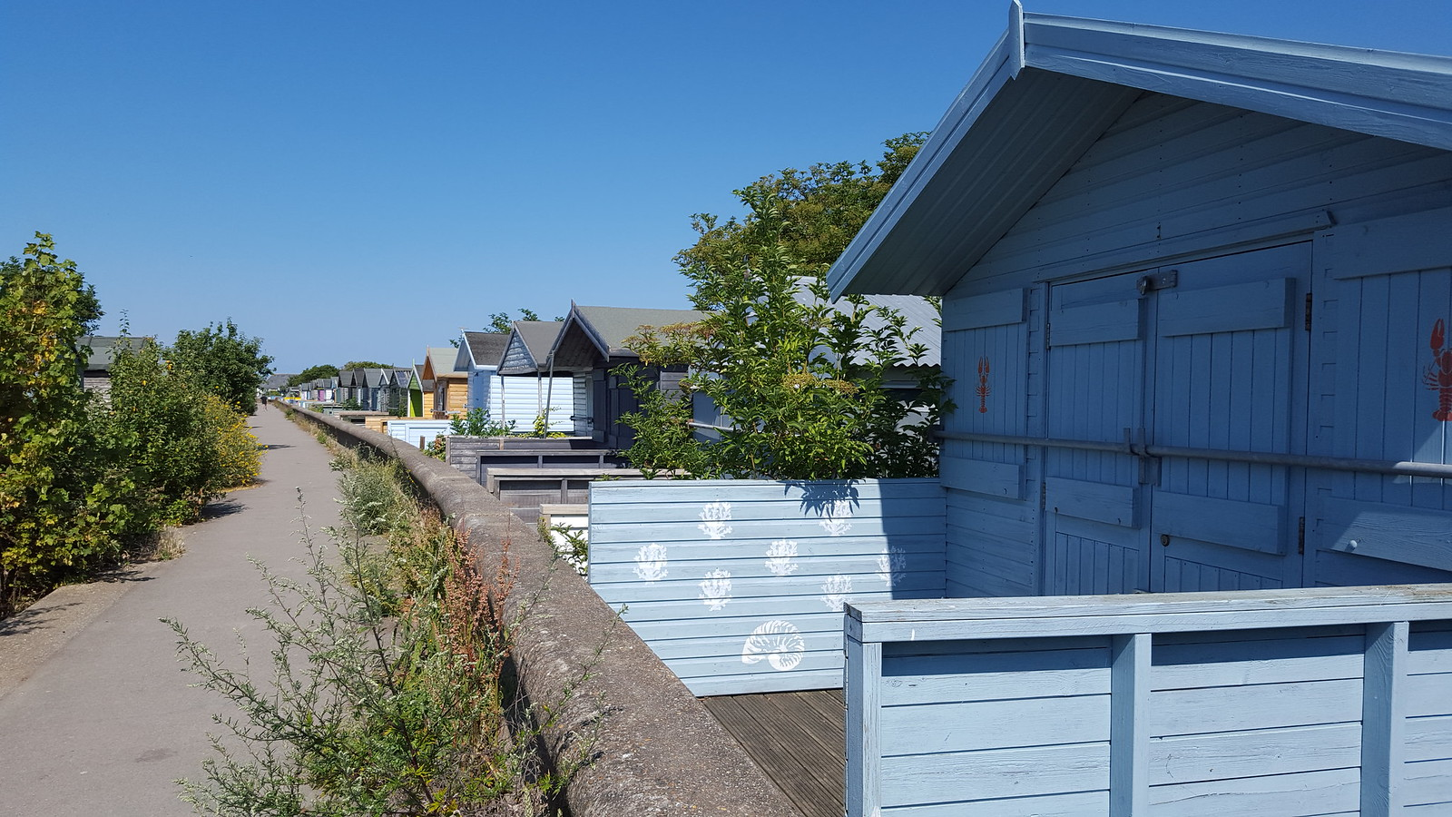 Faversham to Whitstable walk
