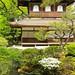 Pavillon d'argent . Kyoto . Japon 🇯🇵