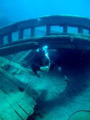 vehicle(0.0), diving(0.0), freediving(0.0), underwater diving(1.0), sea(1.0), ocean(1.0), marine biology(1.0), underwater(1.0), shipwreck(1.0), reef(1.0),