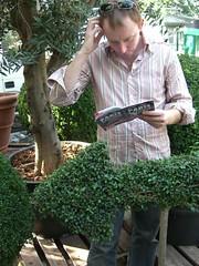 shrub, garden, tree, plant, produce,