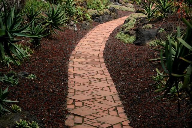 Aloe Garden Path
