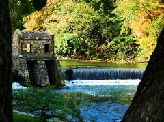 Speedwell park - dam 2