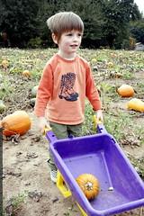 nick wheeling his pumpkin    mg 2091