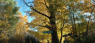 Fall and a new street sign