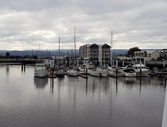 Reflection of the fleet in the North Esk River at The Seaport, and temporary stranded, due to low tide in Launceston, Tasmania