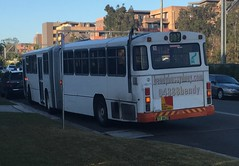 Former STA bendy bus now operating as a charter bus
