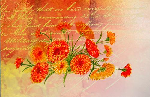Floral Missive