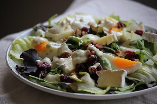 Closeup apple-pecan-camembert salad