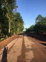 Abandoned Poplar Tree Road