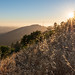 Sunset at Russian Ridge by Matt McLean
