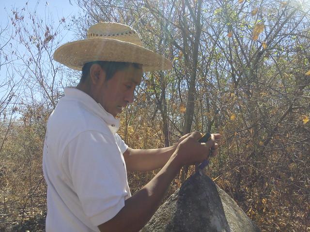 Georreferenciación en campo - Cueva El Salitre