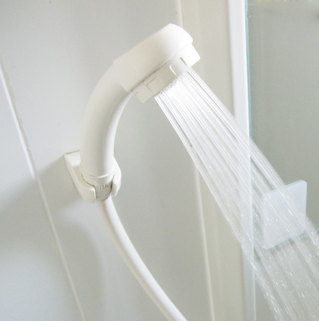 はじめての子犬のシャンプーのためのシャワー
