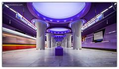 41715913080 16335071e3 m - The Purple Cease
