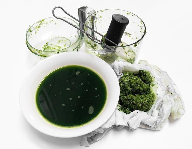 Pandan Extract Maken