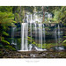 Russell Falls - Tasmania by Dominic Scott Photography