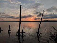 Sun Rise Parkers Creek Jordan Lake SP NC 060943_1