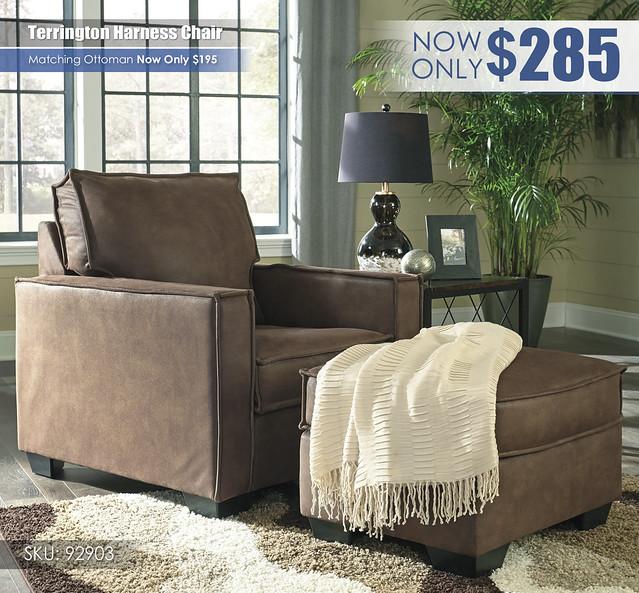 Terrington Harness Chair_92903-20-14