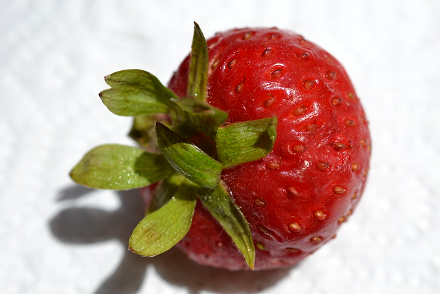Strawberry, Nikon D3100, AF-S DX Micro Nikkor 40mm f/2.8G