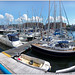 Milford Haven marina panorama