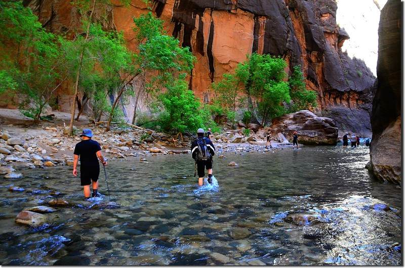 The Narrows, Zion National Park (15)