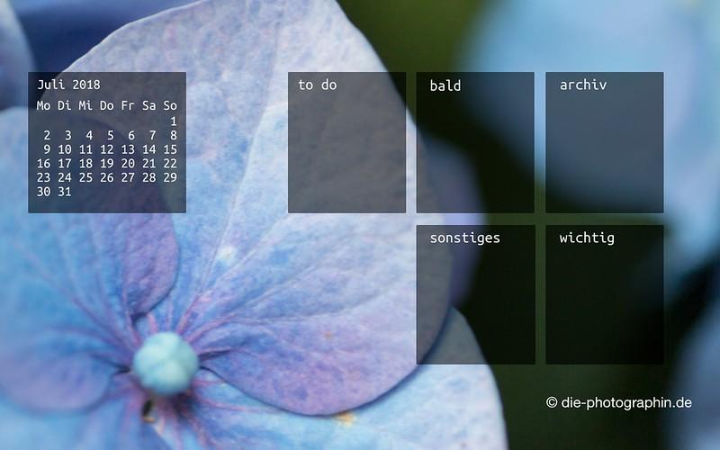 072018-hortensie-makro-organizedDesktop-wallpaperliebe-diephotographin