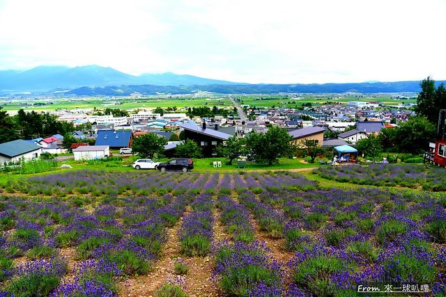 NANAKAの花畑11