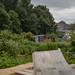 Scotland's Gardens Craigintinney Telferton July 2018 -97