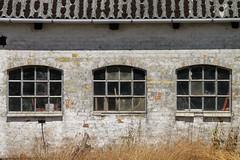 Fenster  - Windows