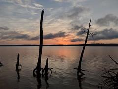 Sun Rise Parkers Creek Jordan Lake SP NC 060943