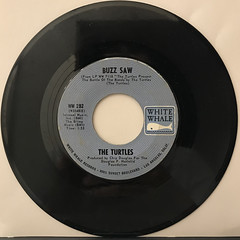 THE TURTLES:YOU SHOWED ME(RECORD SIDE-B)