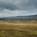 Train on Ribblehead Viaduct