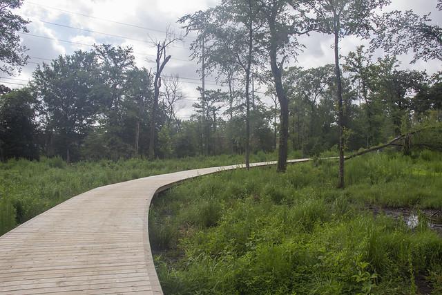 Arboretum0