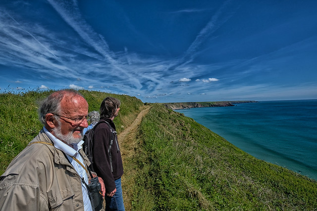 Encounters on the Pembrokeshire, Fujifilm X-T20, XF10-24mmF4 R OIS