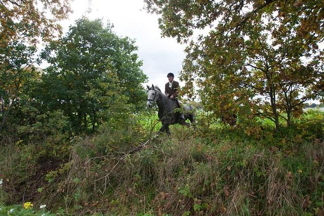 Midland Hunt Landhorst 2015-9026