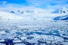 Antarctica-111124-986