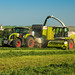 CLAAS Grass Silage