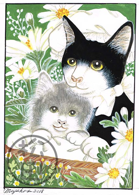 Black cat with kitten and daisies