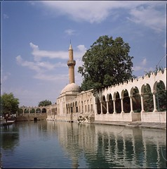 Halil Ür-Rahman Mosque in Şanlıurfa and Pool of sacred fish