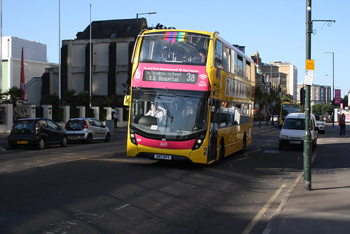 Yellow Buses 202 SN17MTV
