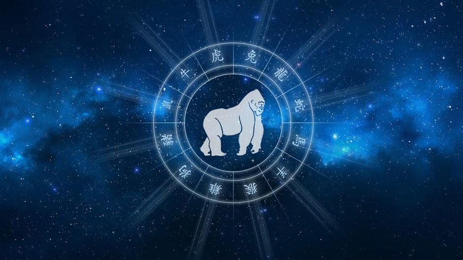 Horoskop chiński Małpa