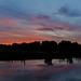 Reflective sunset.
