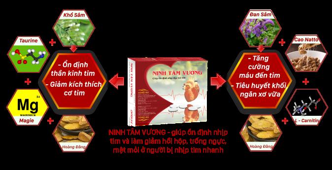 Cơ chế Ninh Tâm Vương giúp ổn định nhịp tim