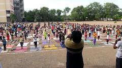 Celebration of International Day of Yoga by VK Branch centers