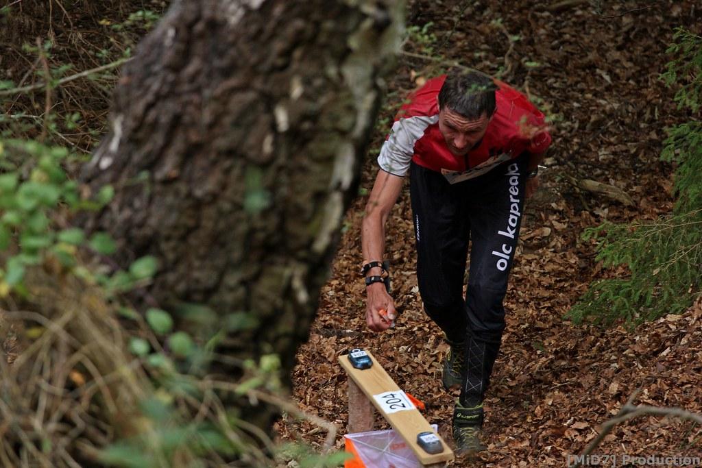 WMOC 2018 Forest Qualification